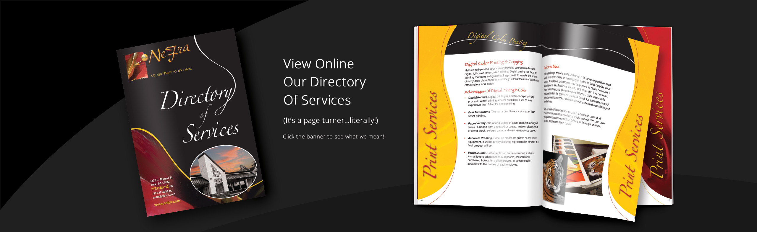 Banner_DirectoryOfServices3